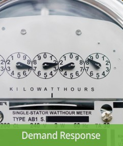 Electricity meter with demand response caption